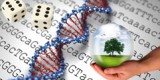 a pair of die, DNA and a hand holding a globe with a tree inside wiht sequencing in the background