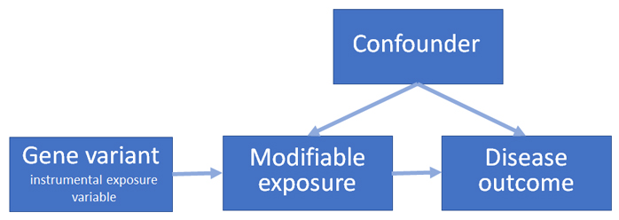flowchart: Confounder arrows to Modifiable Exposure and Disease Outcome; Gene Variant (Instrument Exposure Variable) arrow to Modifiable Exposure and Modifiable Exposure arrow to Disease Outcome