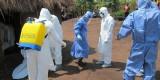 2012 investigation of Ebola virus in Uganda