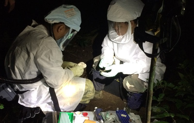 Rabies and rabies-like viruses are found in bats on every inhabited continent. CDC teams work to train local capacity on methods of assessing wildlife for zoonotic pathogens. These include not just virus detection, but also on practices to stay safe. (Vietnam)