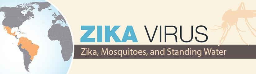 Zika, Mosquitoes, and Standing Water