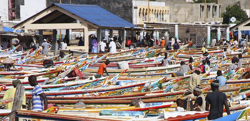 Soumbedioune fish market in Dakar, Senegal