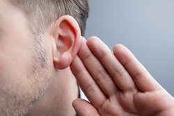 The outer ear—the part of the ear you see—funnels sound waves into the ear canal.