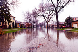 After you return home, if you find that your home was flooded, practice safe cleaning.