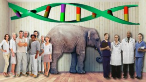 a elephant in a room with a crowd on one side and doctors on the other side including DNA above on the wall