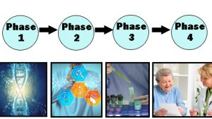 Phase 1 through Phase 4 with an image of double helices for Phase 1, a person looking at DNA, a maginfying glass, a microscope and a brain, for Phase 3 a lab worker is shown using a text tube and a pipette, and for Phase 4 a doctor is discussing genetic results with a person