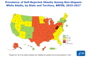 Prevalence of self-reported obesity among non-Hispanic white, non-Hispanic black, and Hispanic adults, by state and territory, Behavioral Risk Factor Surveillance System, 2015–2017. Obesity was defined as a body mass index of 30 or higher based on self-reported weight in kilograms divided by the square of the height in meters. Prevalence estimates reflect changes in BRFSS methods that started in 2011. These estimates should not be compared to prevalence estimates before 2011. Areas are indicated as having insufficient data if they had a sample size of less than 50 or a relative standard error (dividing the standard error by the prevalence) of 30% or more.