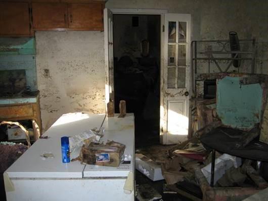 Mold inside home.