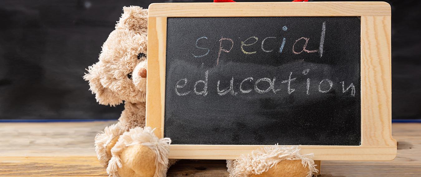 Special Education Bear
